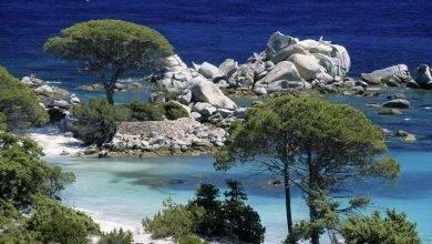Photo of شواطئ فرنسا في الصيف .. تعرف على أحلى شواطئ فرنسا للصيف