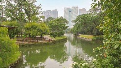 Photo of حديقة البحيرة في كوالالمبور… تعرف على كل ما يخص حديقة البحيرة في كوالالمبور ماليزيا