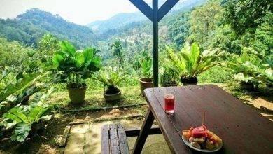 Photo of حديقة الفواكه في كوالالمبور .. تعرف على معلومات عن حديقة الفواكه في كوالالمبور ماليزيا