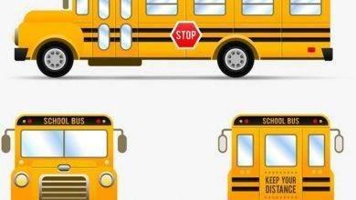 Photo of هل تعلم عن النقل المدرسي؟.. إليك مجموعة من المعلومات المبسطة عن النقل المدرسي