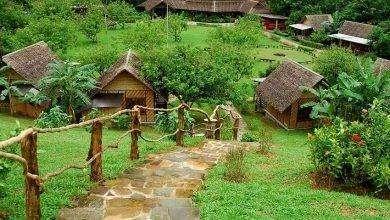 Photo of الحياة الريفية في تايلند .. تعرف علي مظاهر الحياة المختلفة في الريف التايلندي