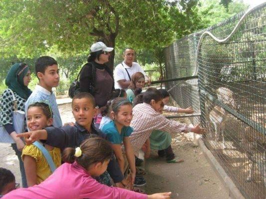 استعداد الحديقة للأطفال