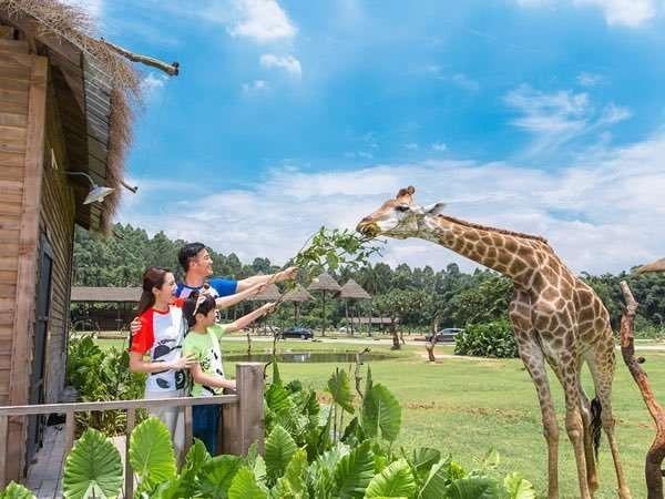الأنشطة في حديقة الحيوان في كوانزو