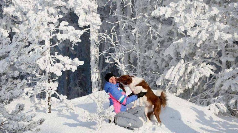الطقس في ليتوانيا شهر ديسمبر