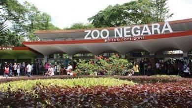 Photo of حديقة الحيوان في سيلانجور