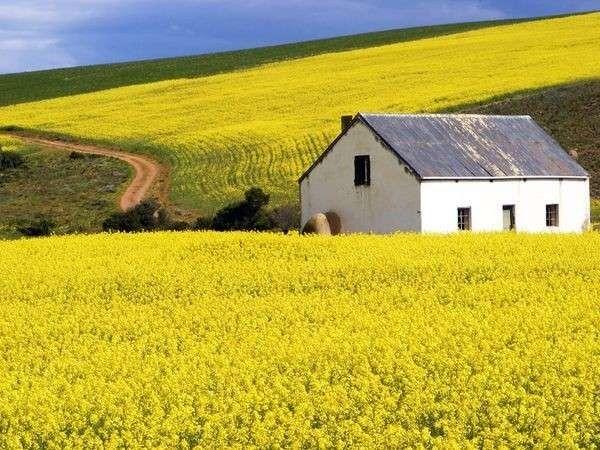 الحياة الريفية في جنوب افريقيا
