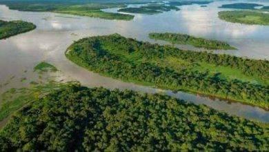 صورة معلومات عن نهر الكونغو .. معلومات عن أعمق نهر فى العالم ..