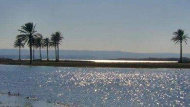 Photo of معلومات عن نهر الفرات في سوريا …تعرف على أطول نهر فى غرب آسيا..