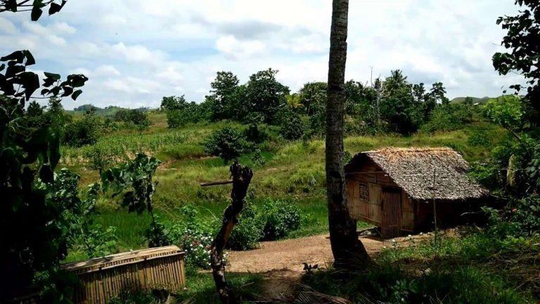 الحياة الريفية بالفلبين