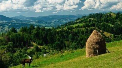 Photo of الحياة الريفية في رومانيا .. تعرف على أجمل الأماكن الريفية التي ننصحك باستكشافها في رومانيا