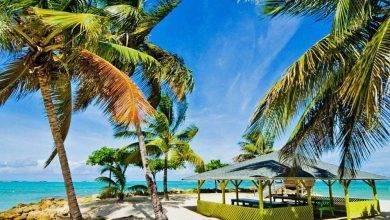 Photo of أهم المعلومات عن دولة ترينيداد وتوباغو