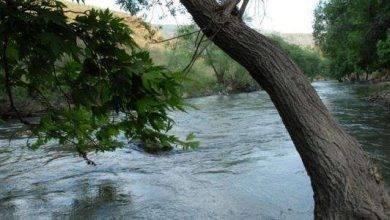 Photo of معلومات عن نهر الليطاني …تعرف على أكبر نهر فى لبنان..