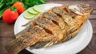 Photo of طريقة حفظ السمك المقلي .. تعرف على كيفية تخزين السمك المقلي لتناوله في اليوم التالي