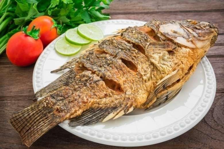 طريقة حفظ السمك المقلي