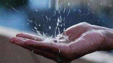Photo of فوائد ماء المطر