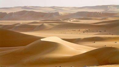 Photo of الطقس في ليبيا… معلومات عن المناطق السّاحليّة والصّحراويّة في ليبيا