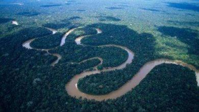 صورة معلومات عن نهر الامازون ..تعرف عليه..