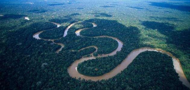 معلومات عن نهر الامازون تعرف عليه