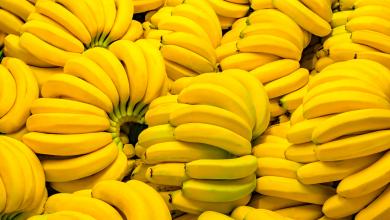 Photo of طريقة حفظ الموز لأطول فترة ممكنة