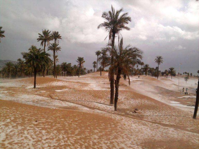 Photo of معلومات عن مدينة بشار الجزائر