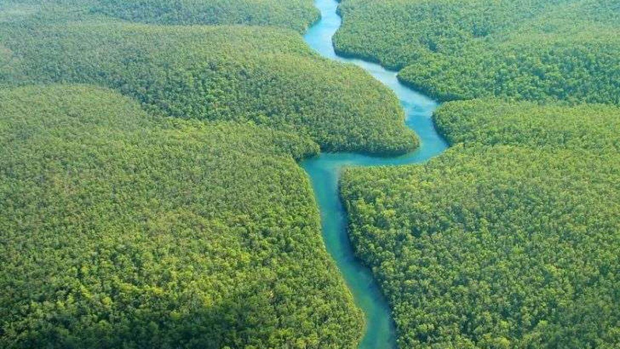 أين يقع نهر الأمازون وكم 5