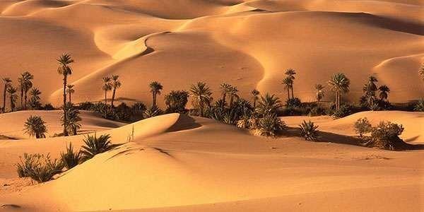 Photo of الطقس في قطر… معلومات عن الفصول في قطر والرّياح والأمطار فيها