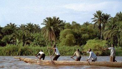 صورة معلومات عن حوض نهر الكونغو