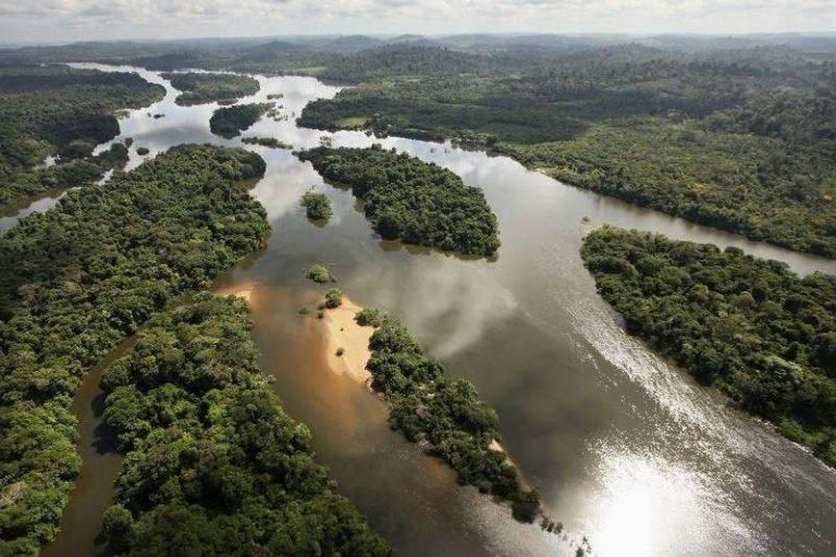 نهر الأمازون ويكيبيديا 7
