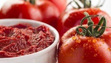 Photo of طريقة حفظ الطماطم المطحون