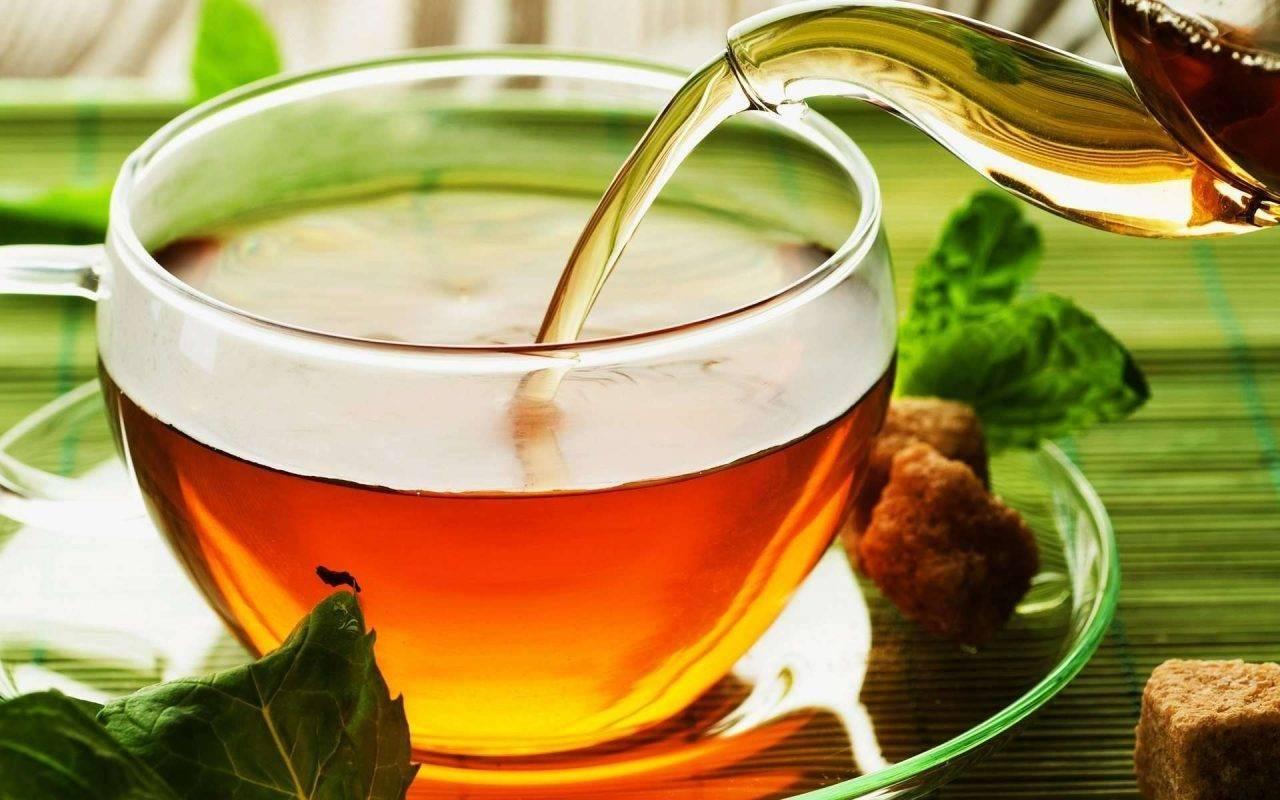 الشاي الطبيعي خالي من السعرات الحرارية