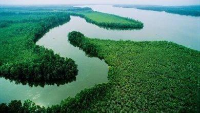 Photo of معلومات عن نهر النيجر .. تعرف على واحد من أطول أنهار أفريقيا ..
