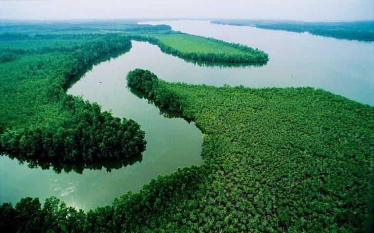 معلومات عن نهر النيجر