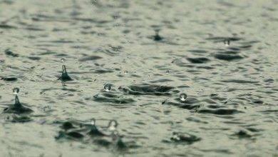 Photo of فوائد الأمطار