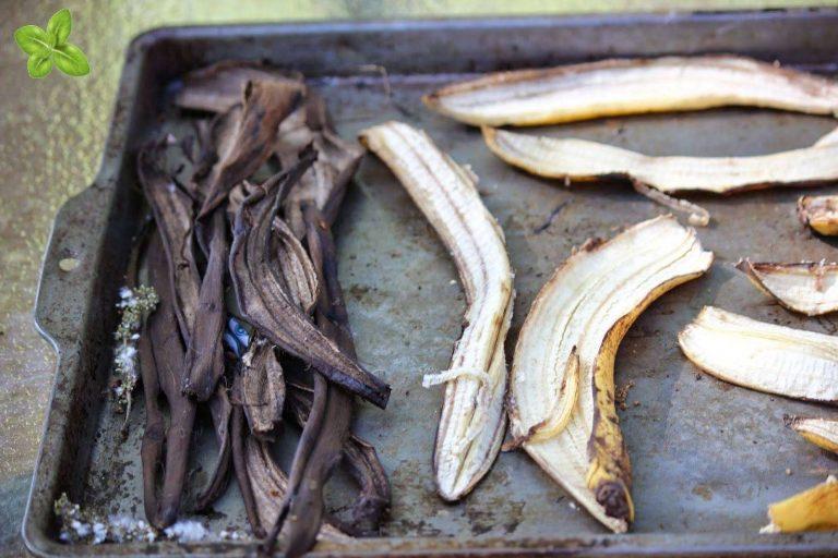 فوائد قشر الموز المجفف