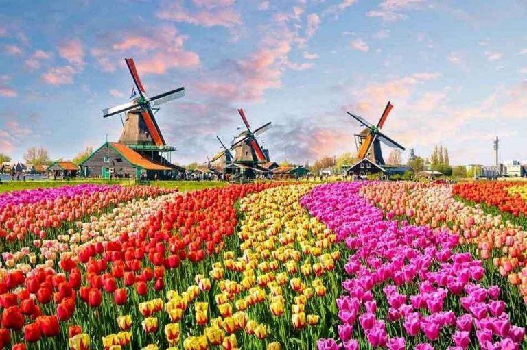 السياحه في هولندا شهر ابريل