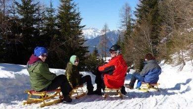 Photo of السياحة في النمسا للأطفال