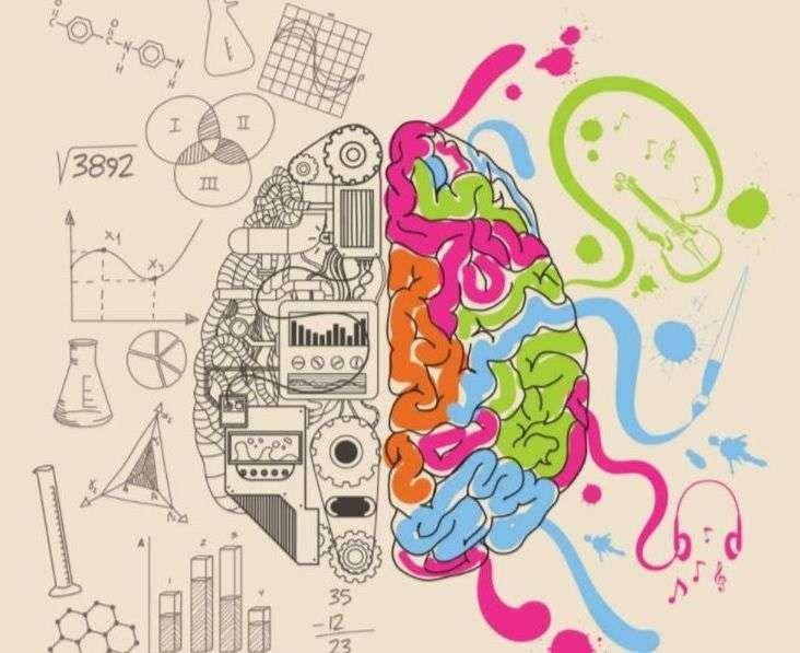 معلومات هل تعلم عن الذكاء
