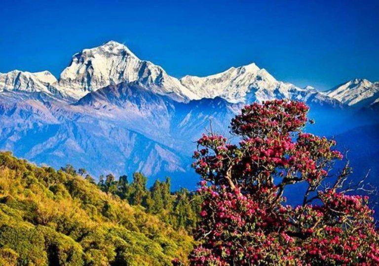 السياحة في نيبال 2019