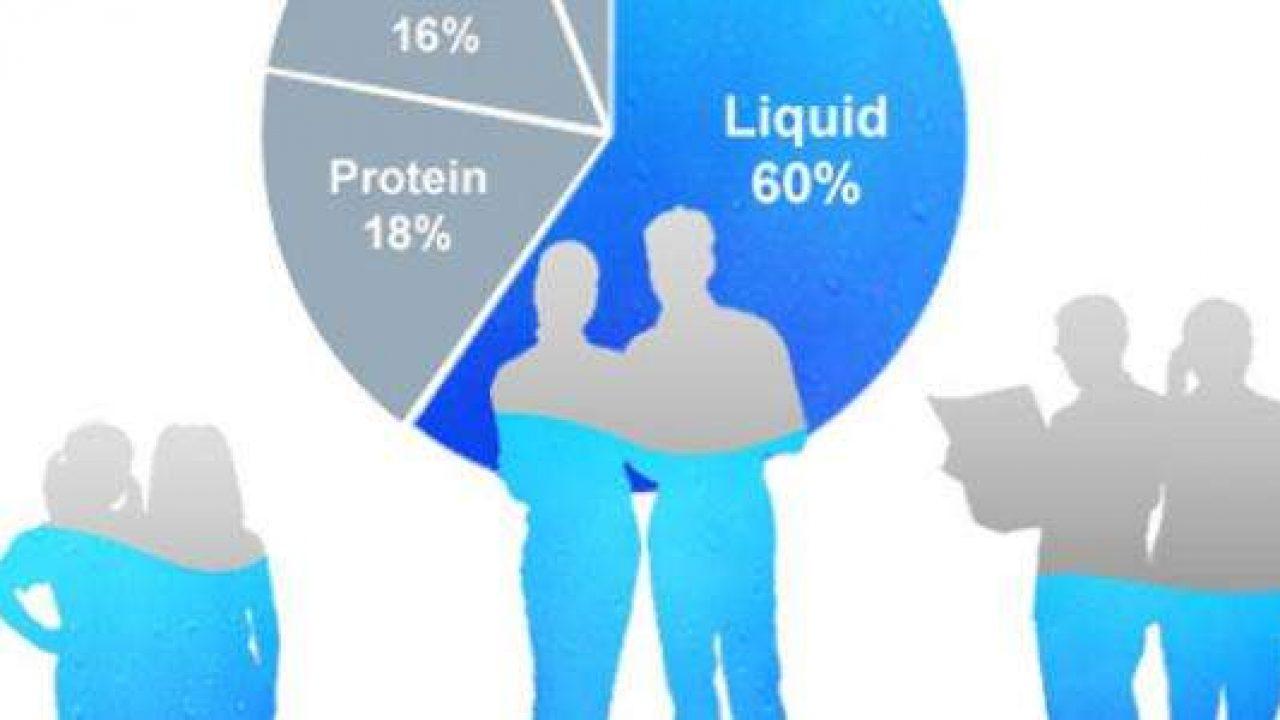 كم نسبة الماء في جسم الإنسان موقع معلومات