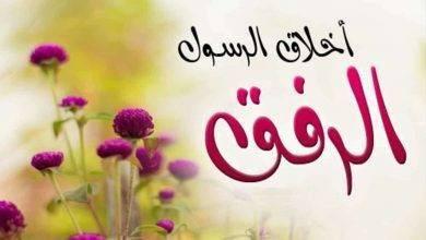 Photo of هل تعلم عن الرفق ..