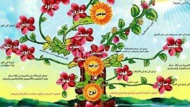 Photo of هل تعلم عن الانبياء ..