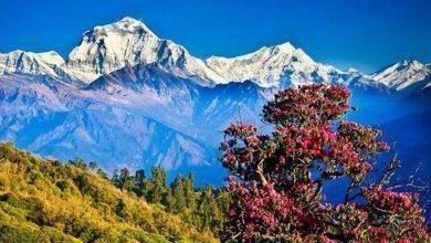 Photo of السياحة في نيبال 2019