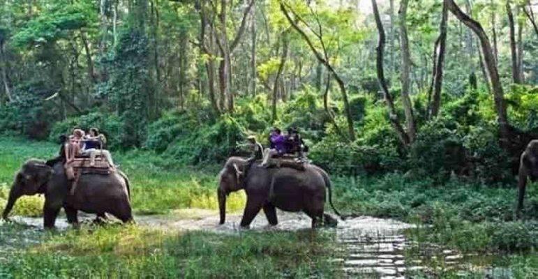 حديقة شيتوان الوطنية - السياحة في نيبال 2019