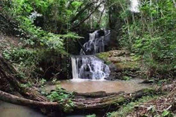 غابة Karura - السياحة في نيروبي 2019