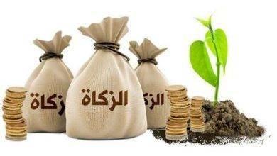 Photo of هل تعلم عن الزكاة .. الركن الثالث من أركان الإسلام