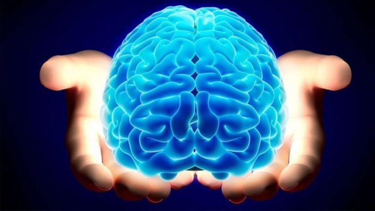 Photo of نسبة استخدام العقل البشري .. العقل البشرى وأسطورة إستخدام 10% منه