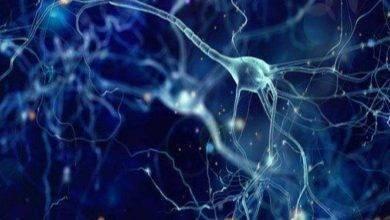 Photo of اضطراب الهرمونات .. اضطراب الهرمونات أسبابه وطرق علاجه