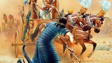 Photo of احداث معركة مجدو