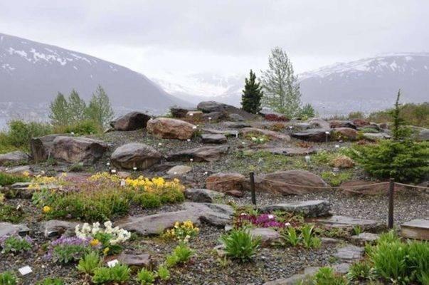 Botaniske Hage - السياحة في النرويج 2019