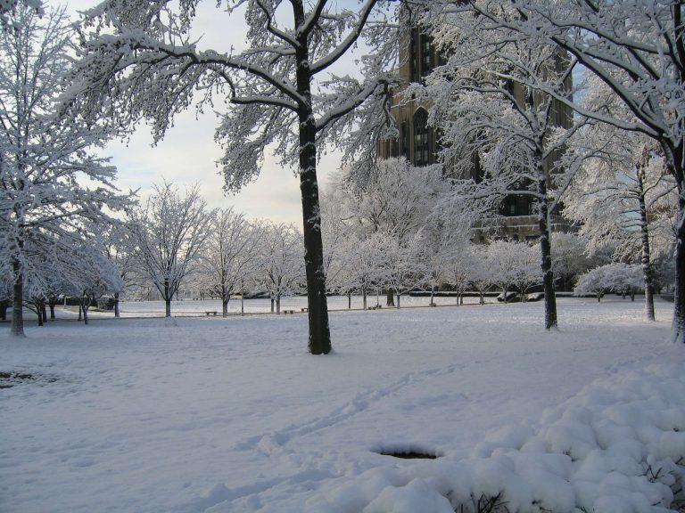 فصل الشتاء بالانجليزي English 100 12
